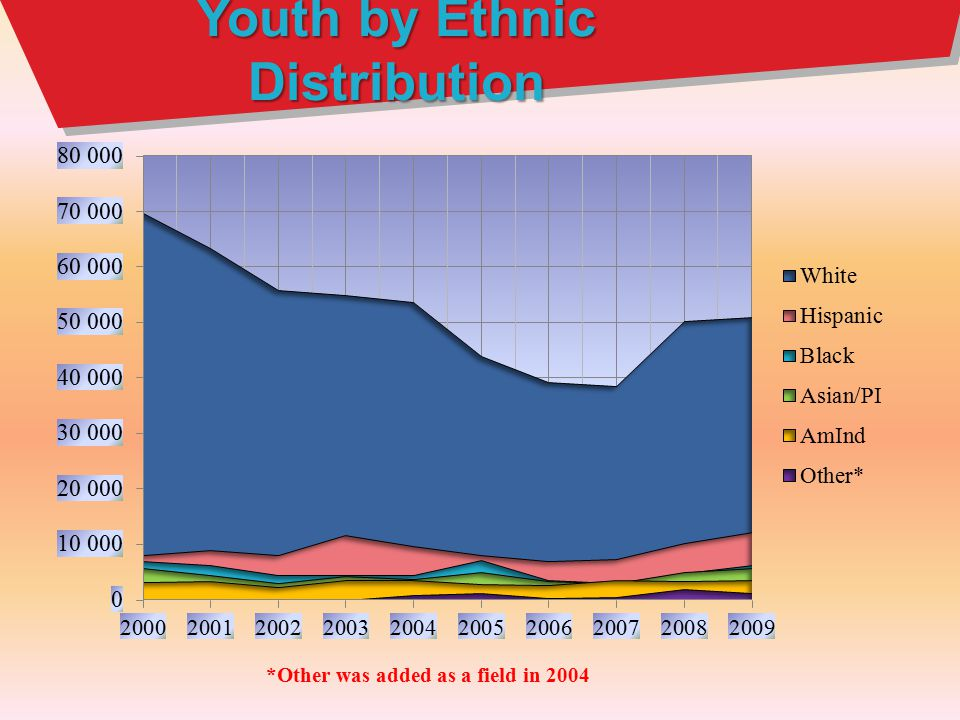 Youth by Ethnic Distribution *Other was added as a field in 2004