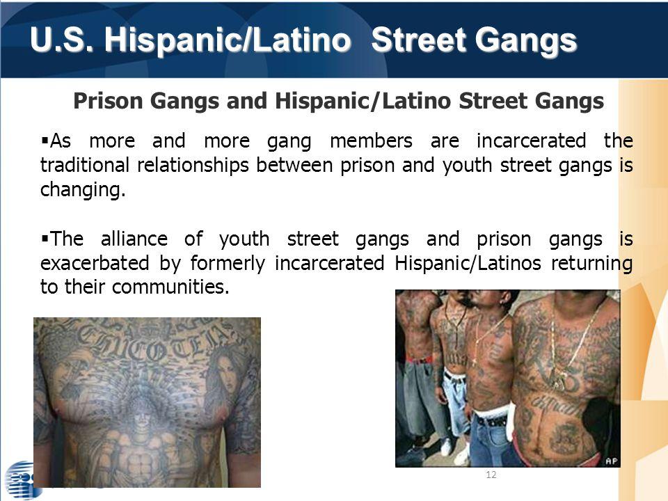 U.S. Hispanic/Latino Street Gangs U.S. Hispanic/Latino Street Gangs 12 Prison Gangs and Hispanic/Latino Street Gangs  As more and more gang members a
