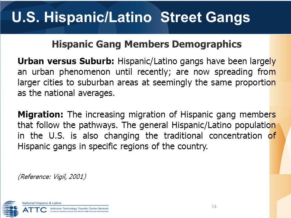 U.S. Hispanic/Latino Street Gangs 14 Hispanic Gang Members Demographics Urban versus Suburb: Hispanic/Latino gangs have been largely an urban phenomen
