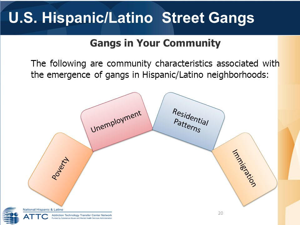 U.S. Hispanic/Latino Street Gangs 20 Gangs in Your Community The following are community characteristics associated with the emergence of gangs in His
