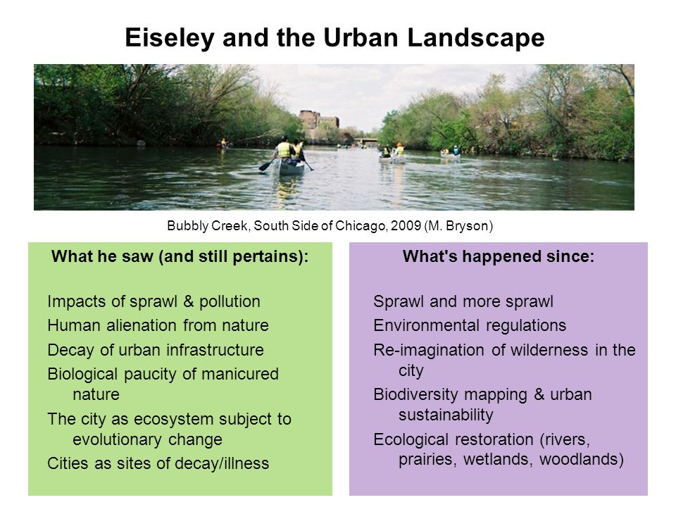 What he saw (and still pertains): Impacts of sprawl & pollution Human alienation from nature Decay of urban infrastructure Biological paucity of manicured nature The city as ecosystem subject to evolutionary change Cities as sites of decay/illness What s happened since: Sprawl and more sprawl Environmental regulations Re-imagination of wilderness in the city Biodiversity mapping & urban sustainability Ecological restoration (rivers, prairies, wetlands, woodlands) Eiseley and the Urban Landscape Bubbly Creek, South Side of Chicago, 2009 (M.