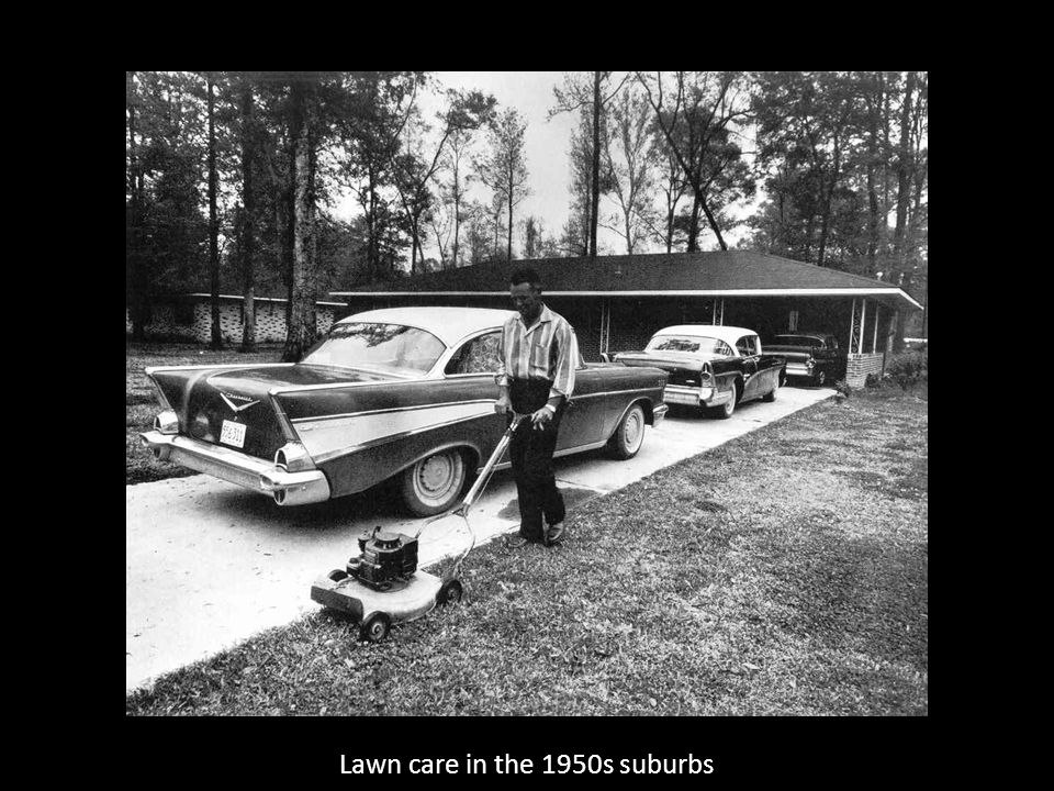 Lawn care in the 1950s suburbs