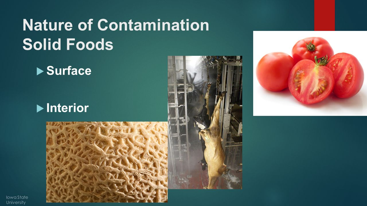 Nature of Contamination Solid Foods  Surface  Interior Iowa State University