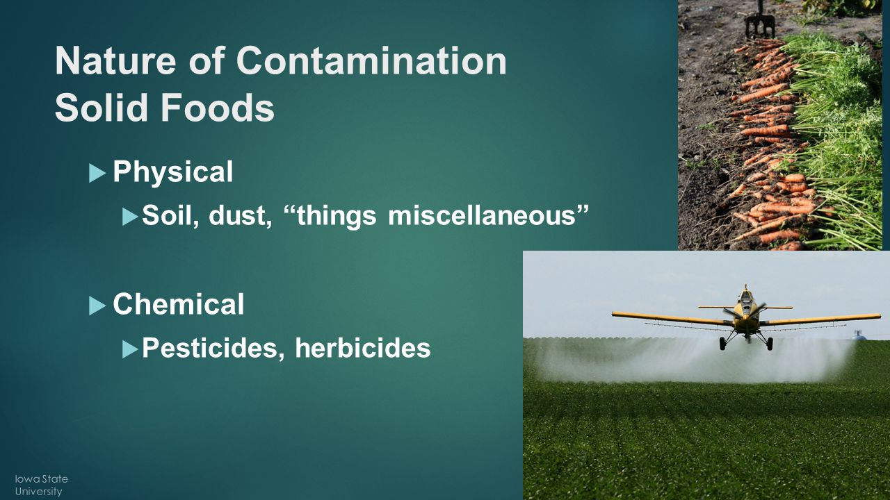 "Nature of Contamination Solid Foods  Physical  Soil, dust, ""things miscellaneous""  Chemical  Pesticides, herbicides Iowa State University"
