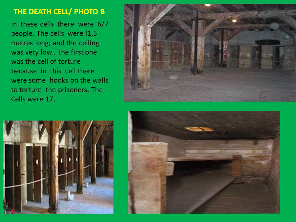 THE HALL OF THE CROSSES/ PHOTO C In this room only the floor and the skeleton made of wood of the room i are still there.