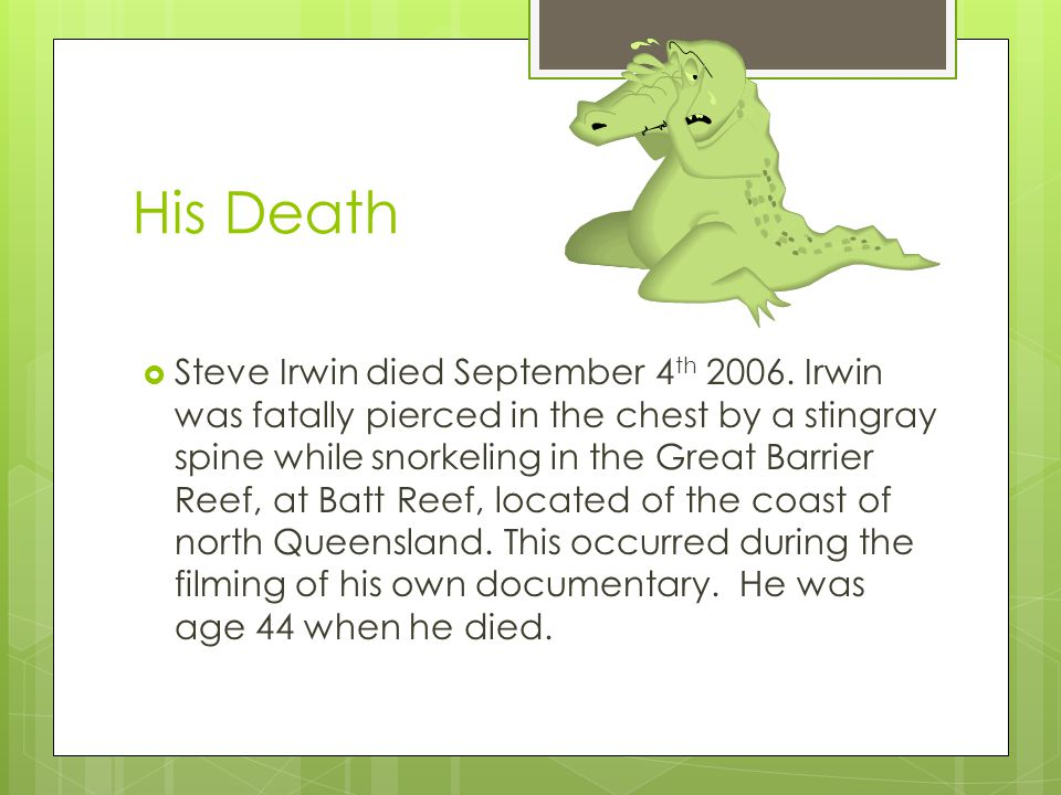 His Death  Steve Irwin died September 4 th 2006. Irwin was fatally pierced in the chest by a stingray spine while snorkeling in the Great Barrier Ree