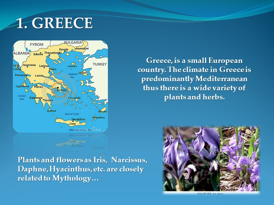 1. GREECE Greece, is a small European country. The climate in Greece is predominantly Mediterranean thus there is a wide variety of plants and herbs.