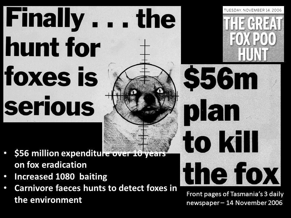 $56 million expenditure over 10 years on fox eradication Increased 1080 baiting Carnivore faeces hunts to detect foxes in the environment Front pages of Tasmania's 3 daily newspaper – 14 November 2006