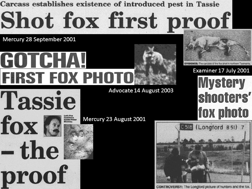 Advocate 14 August 2003 Mercury 28 September 2001 Mercury 23 August 2001 Examiner 17 July 2001