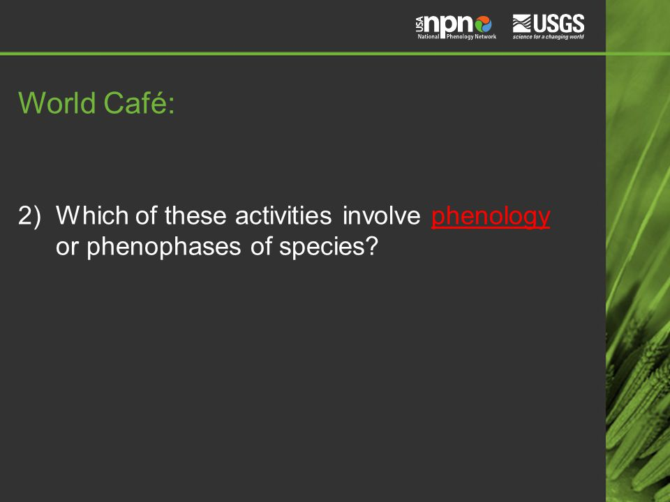 World Café: 2)Which of these activities involve phenology or phenophases of species?