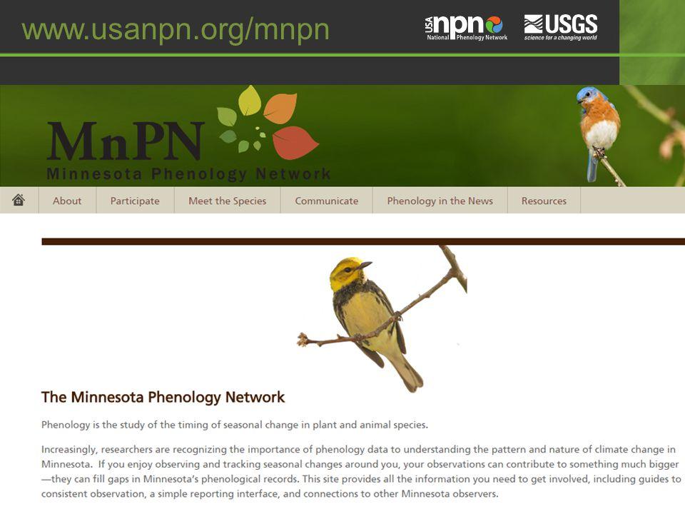 www.usanpn.org/mnpn