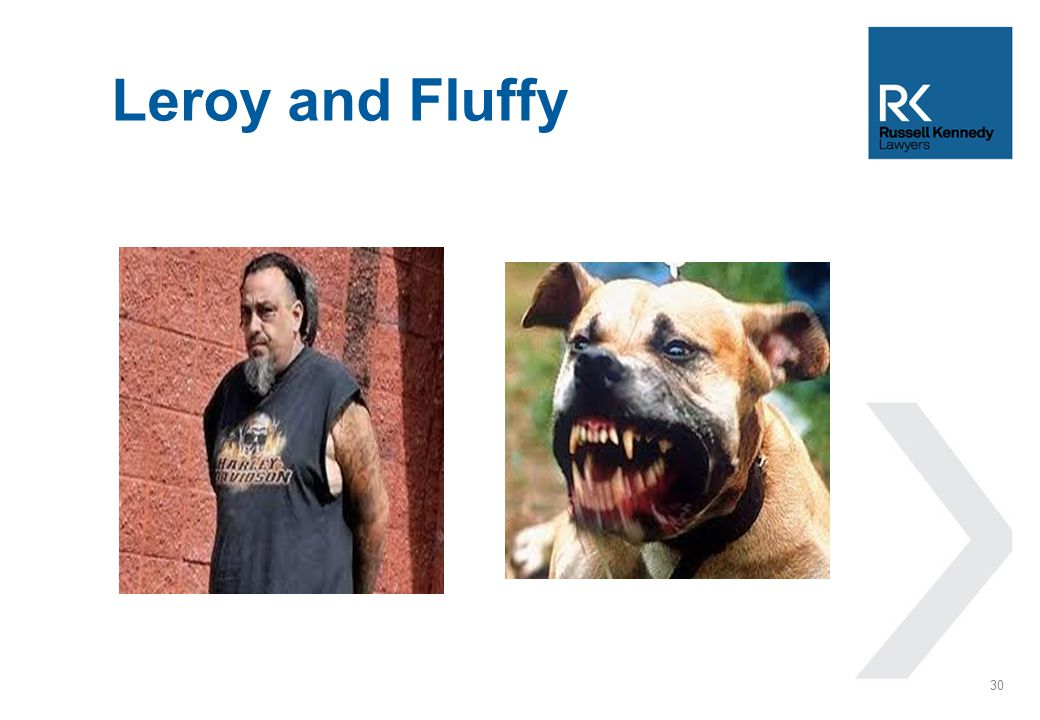 Leroy and Fluffy 30