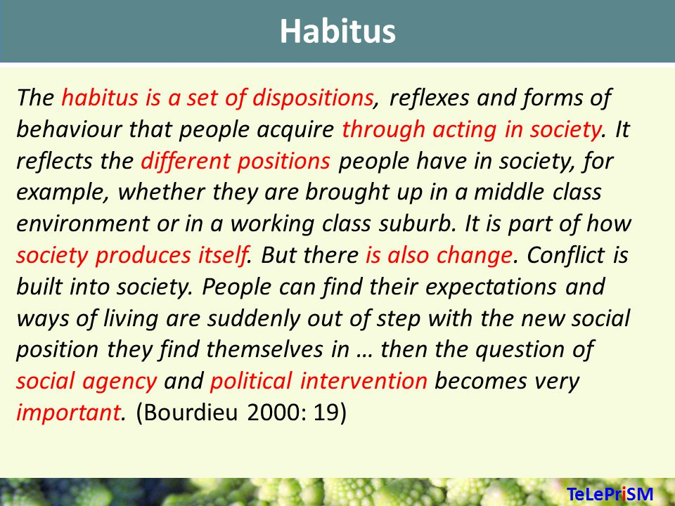 Habitus The habitus is a set of dispositions, reflexes and forms of behaviour that people acquire through acting in society.