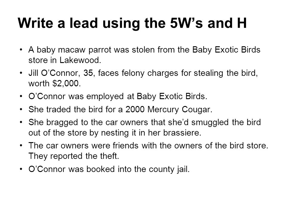 A baby macaw parrot was stolen from the Baby Exotic Birds store in Lakewood. Jill O'Connor, 35, faces felony charges for stealing the bird, worth $2,0