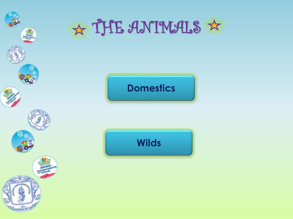 THE ANIMALS Domestics Wilds