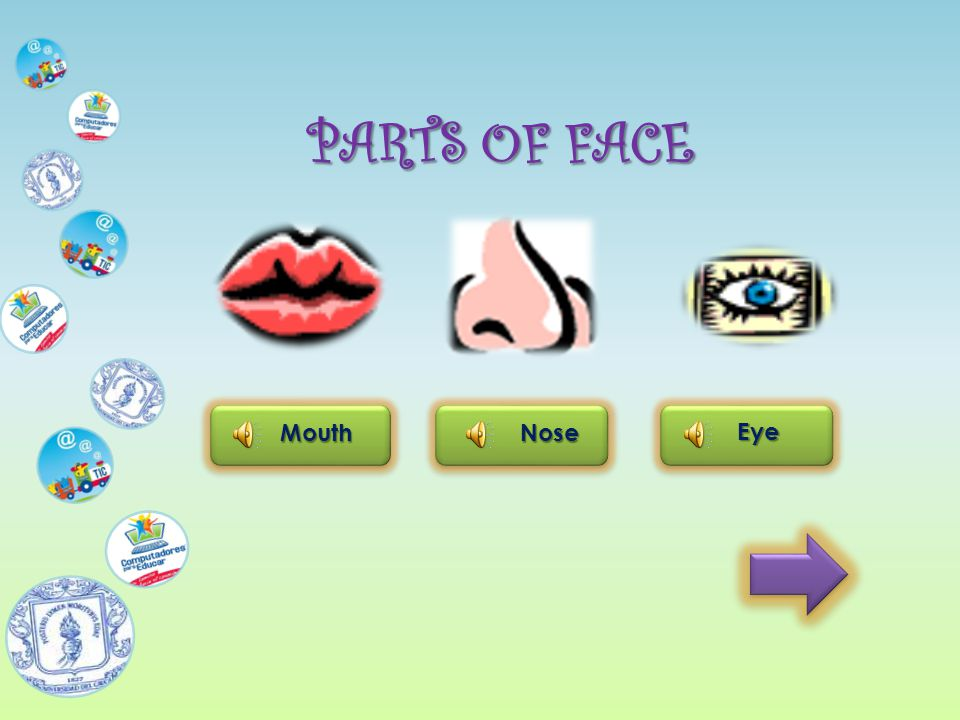 PARTS OF FACE MouthNose Eye