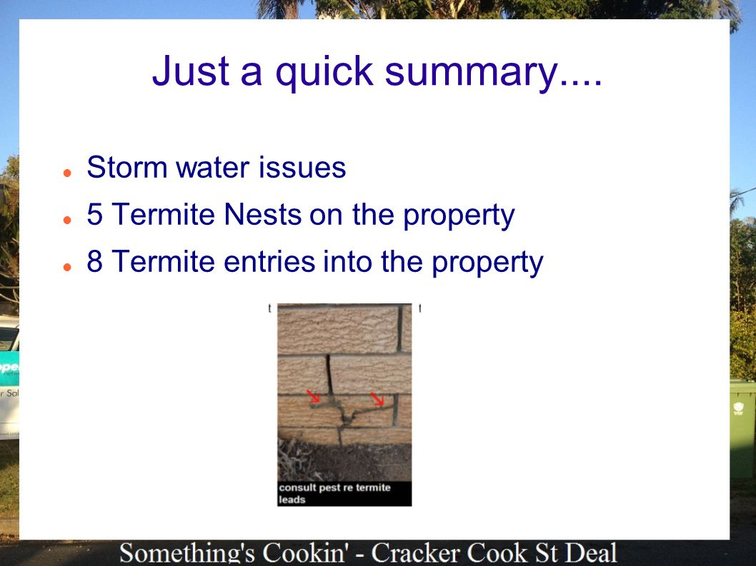 Just a quick summary.... Storm water issues 5 Termite Nests on the property 8 Termite entries into the property