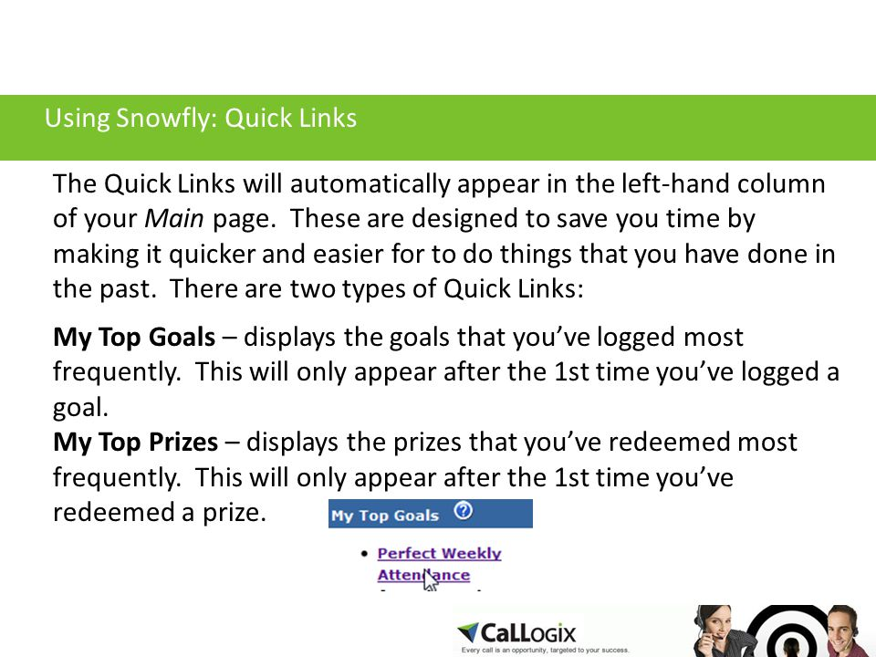 Using Snowfly: Quick Links The Quick Links will automatically appear in the left-hand column of your Main page.