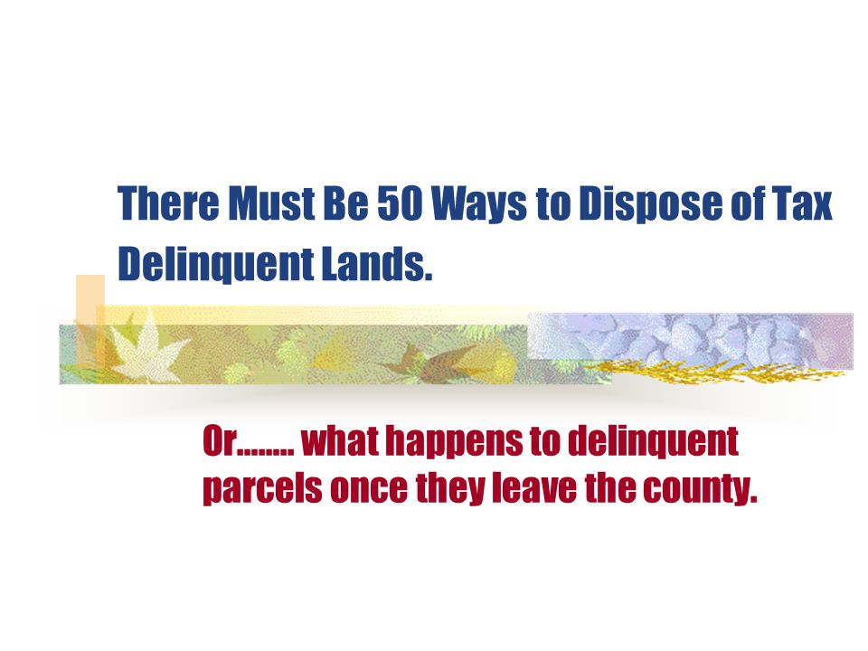 There Must Be 50 Ways to Dispose of Tax Delinquent Lands.