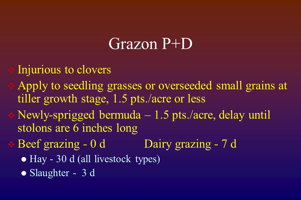 Grazon P+D  Injurious to clovers  Apply to seedling grasses or overseeded small grains at tiller growth stage, 1.5 pts./acre or less  Newly-sprigge