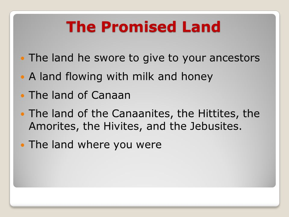 The Promised Land The land he swore to give to your ancestors A land flowing with milk and honey The land of Canaan The land of the Canaanites, the Hittites, the Amorites, the Hivites, and the Jebusites.