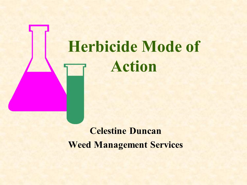 Herbicide Mode of Action Celestine Duncan Weed Management Services