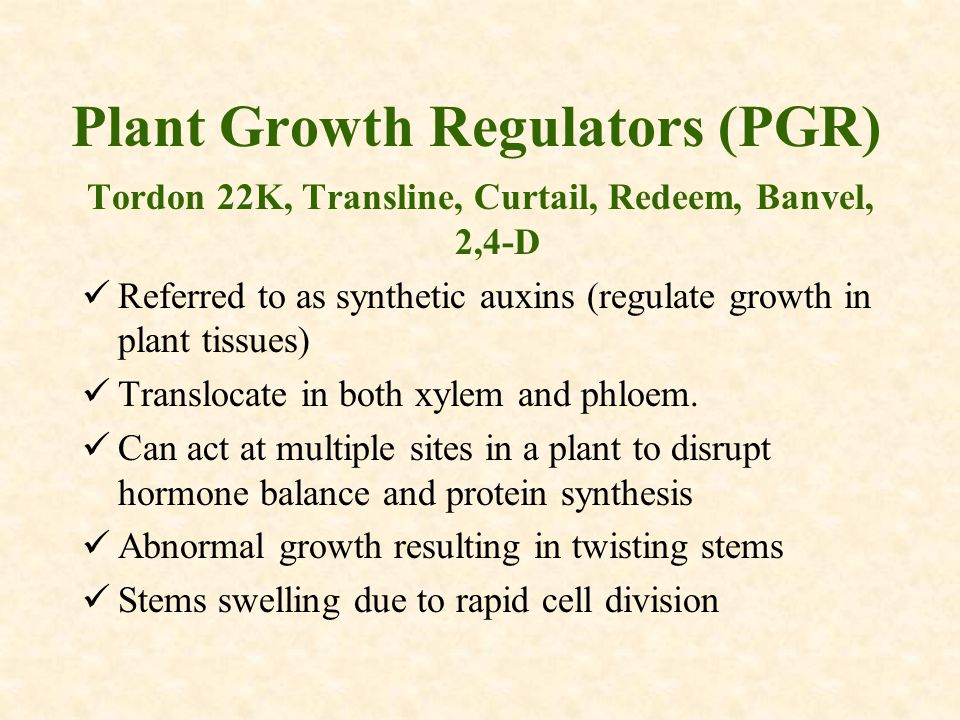Plant Growth Regulators (PGR) Tordon 22K, Transline, Curtail, Redeem, Banvel, 2,4-D Referred to as synthetic auxins (regulate growth in plant tissues) Translocate in both xylem and phloem.