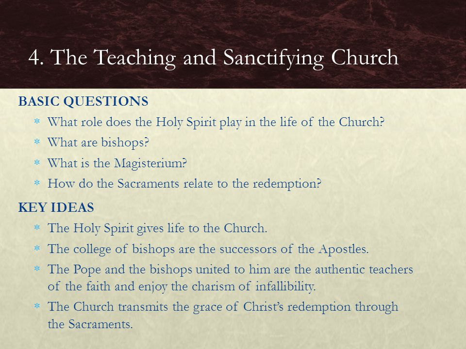 BASIC QUESTIONS  What role does the Holy Spirit play in the life of the Church?  What are bishops?  What is the Magisterium?  How do the Sacrament