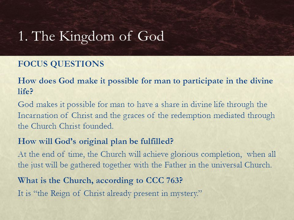 BASIC QUESTIONS  What is the Mystical Body of Christ.