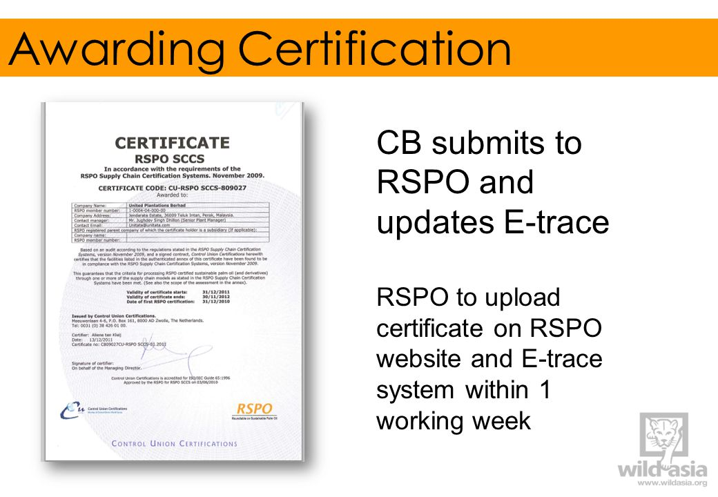 Awarding Certification CB submits to RSPO and updates E-trace RSPO to upload certificate on RSPO website and E-trace system within 1 working week