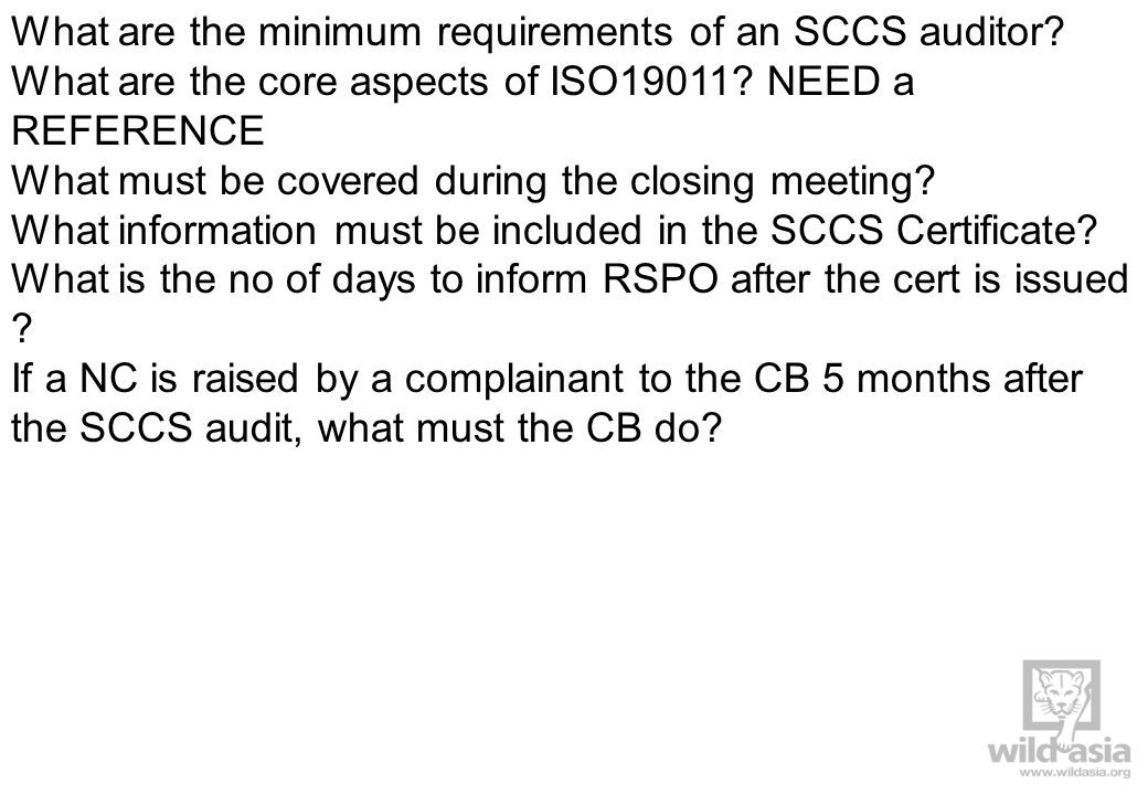 What are the minimum requirements of an SCCS auditor.