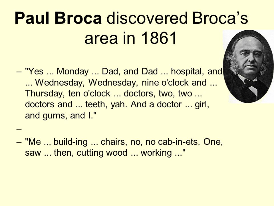 Paul Broca discovered Broca's area in 1861 – Yes...