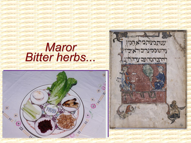 Maror Bitter herbs...