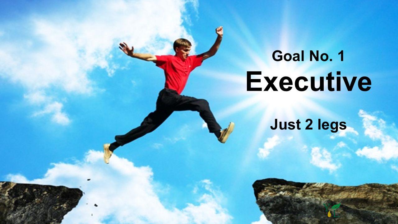 Goal No. 1 Executive Just 2 legs