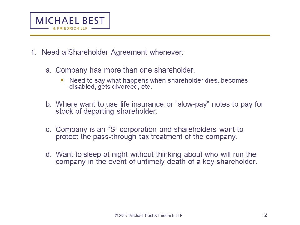 Michael Best  Friedrich Llp  Shareholder Agreement And