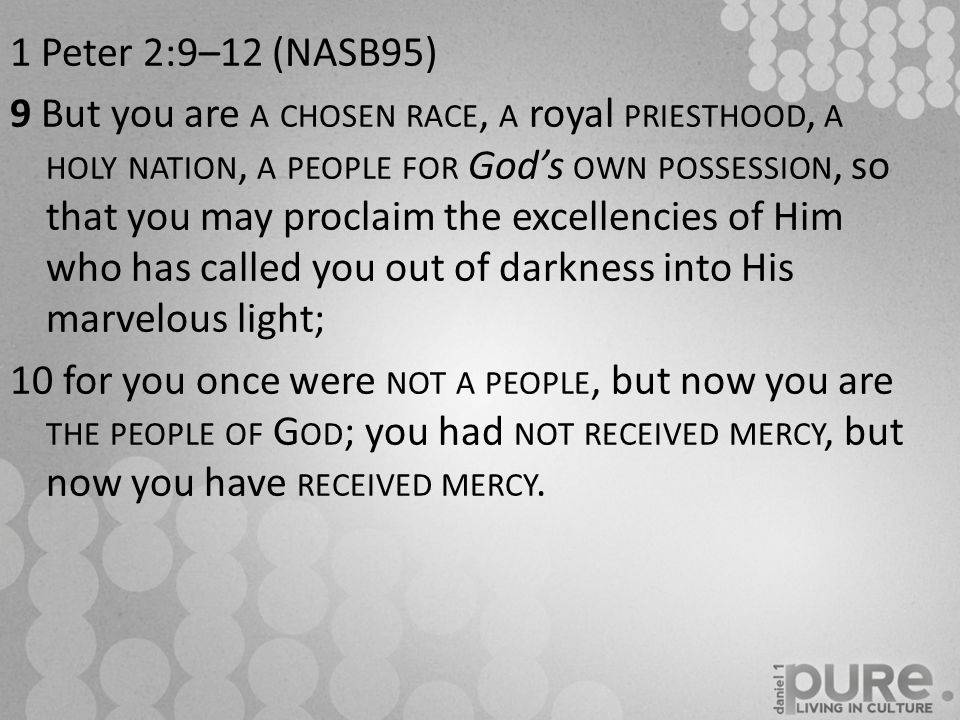 1 Peter 2:9–12 (NASB95) 9 But you are A CHOSEN RACE, A royal PRIESTHOOD, A HOLY NATION, A PEOPLE FOR God's OWN POSSESSION, so that you may proclaim the excellencies of Him who has called you out of darkness into His marvelous light; 10 for you once were NOT A PEOPLE, but now you are THE PEOPLE OF G OD ; you had NOT RECEIVED MERCY, but now you have RECEIVED MERCY.