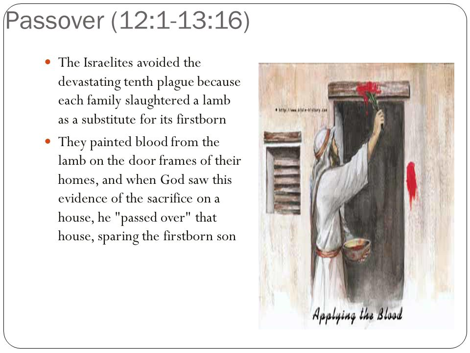 Passover (12:1-13:16) The Israelites avoided the devastating tenth plague because each family slaughtered a lamb as a substitute for its firstborn They painted blood from the lamb on the door frames of their homes, and when God saw this evidence of the sacrifice on a house, he passed over that house, sparing the firstborn son