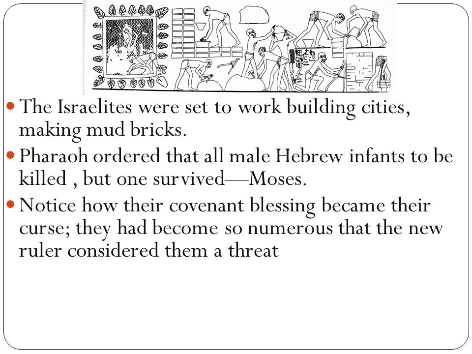 The Israelites were set to work building cities, making mud bricks.