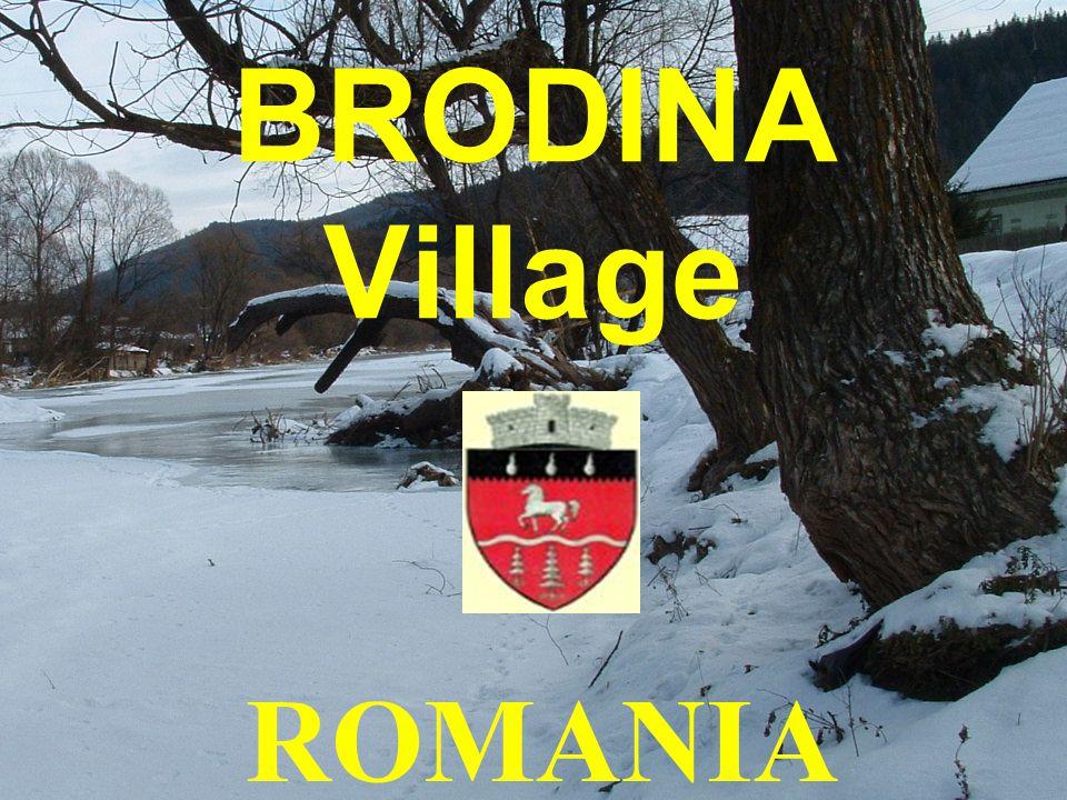 Brodina School Suceava County Romania