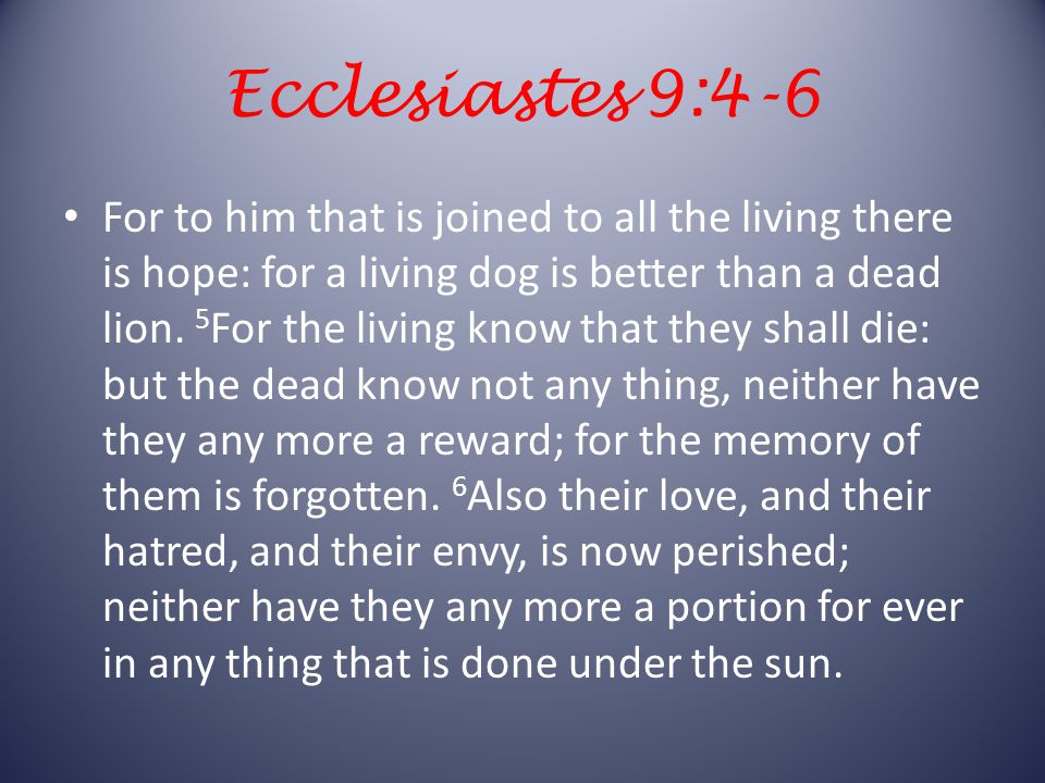 Ecclesiastes 9:4-6 For to him that is joined to all the living there is hope: for a living dog is better than a dead lion.
