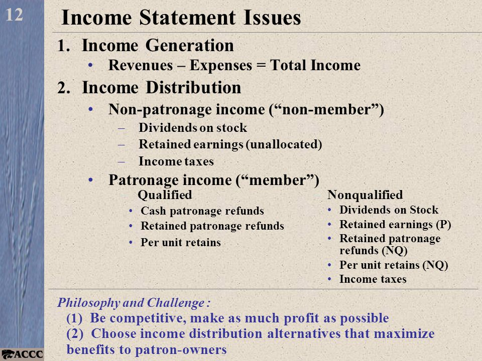 Income Statement Issues 1. Income Generation Revenues – Expenses = Total Income 12 2.