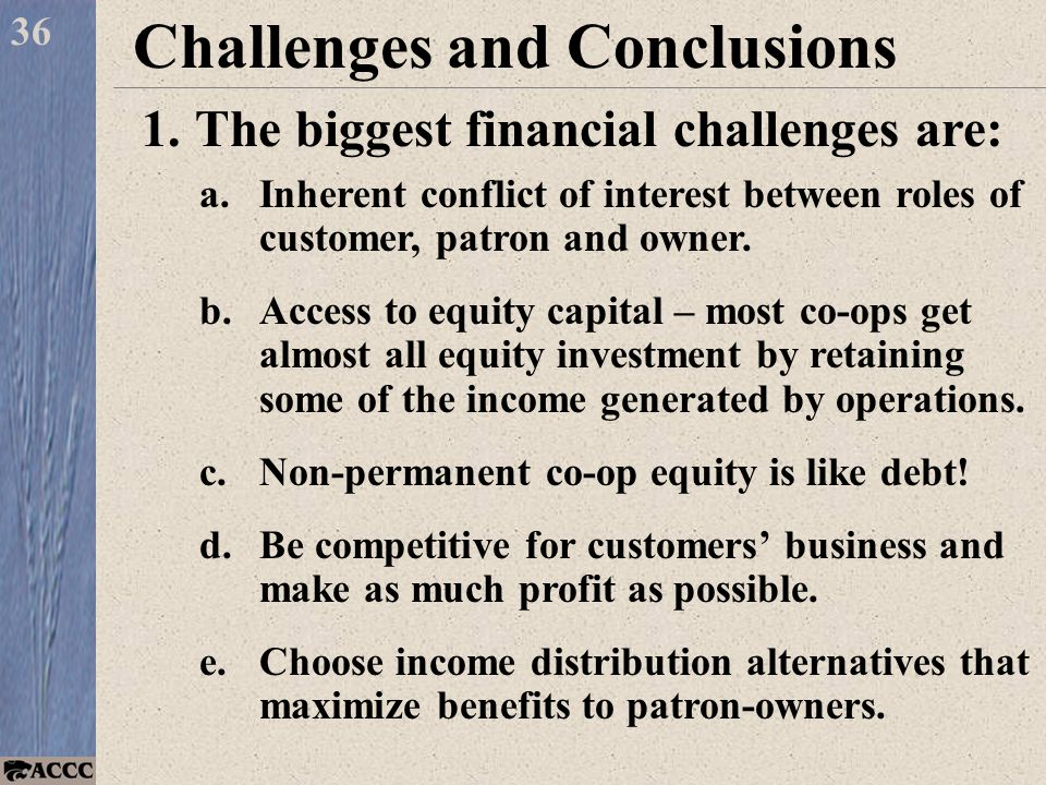 36 Challenges and Conclusions 1.The biggest financial challenges are: a.Inherent conflict of interest between roles of customer, patron and owner.