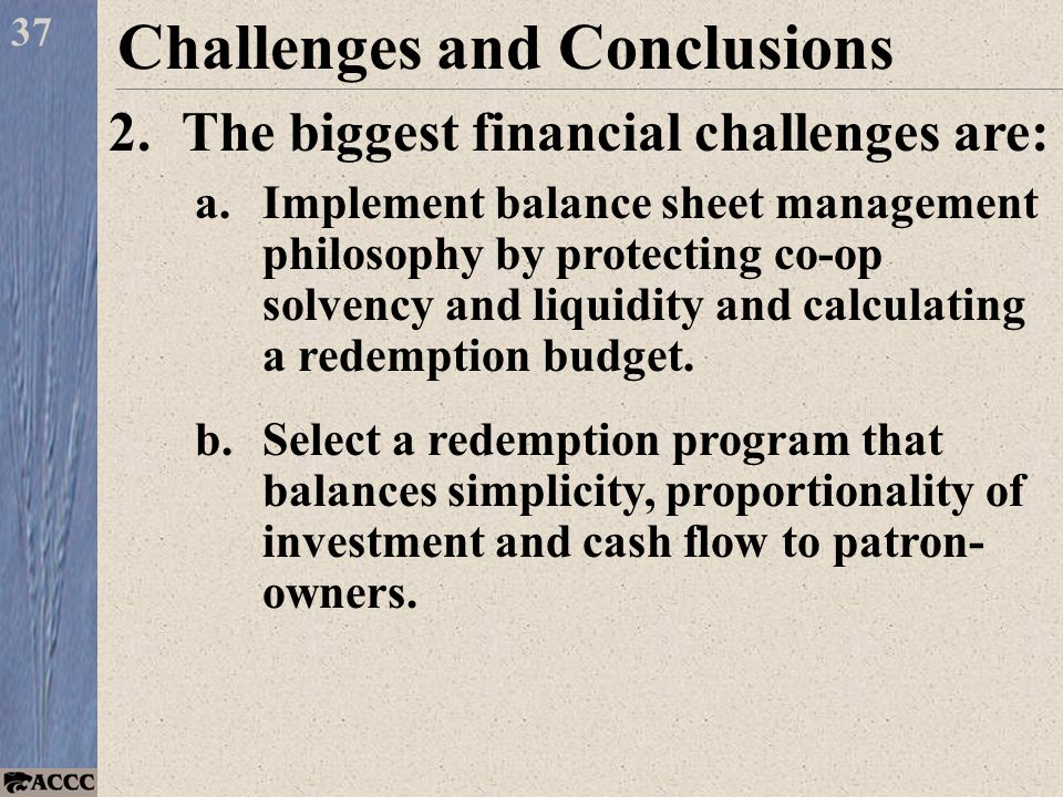 37 Challenges and Conclusions 2.The biggest financial challenges are: a.Implement balance sheet management philosophy by protecting co-op solvency and liquidity and calculating a redemption budget.