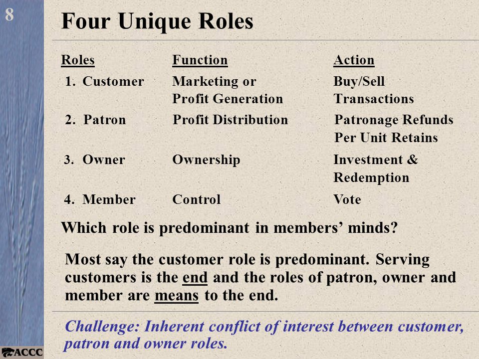 Four Unique Roles RolesFunctionAction 1.CustomerMarketing orBuy/Sell Profit GenerationTransactions 8 Most say the customer role is predominant.