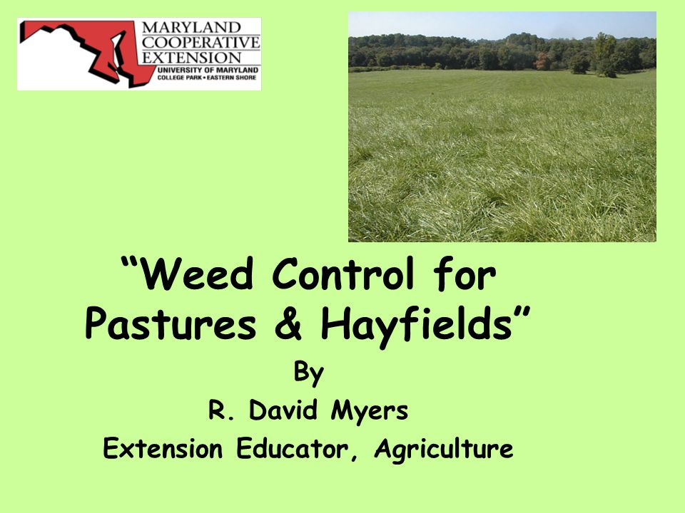 Weed Control for Pastures & Hayfields By R. David Myers Extension Educator, Agriculture