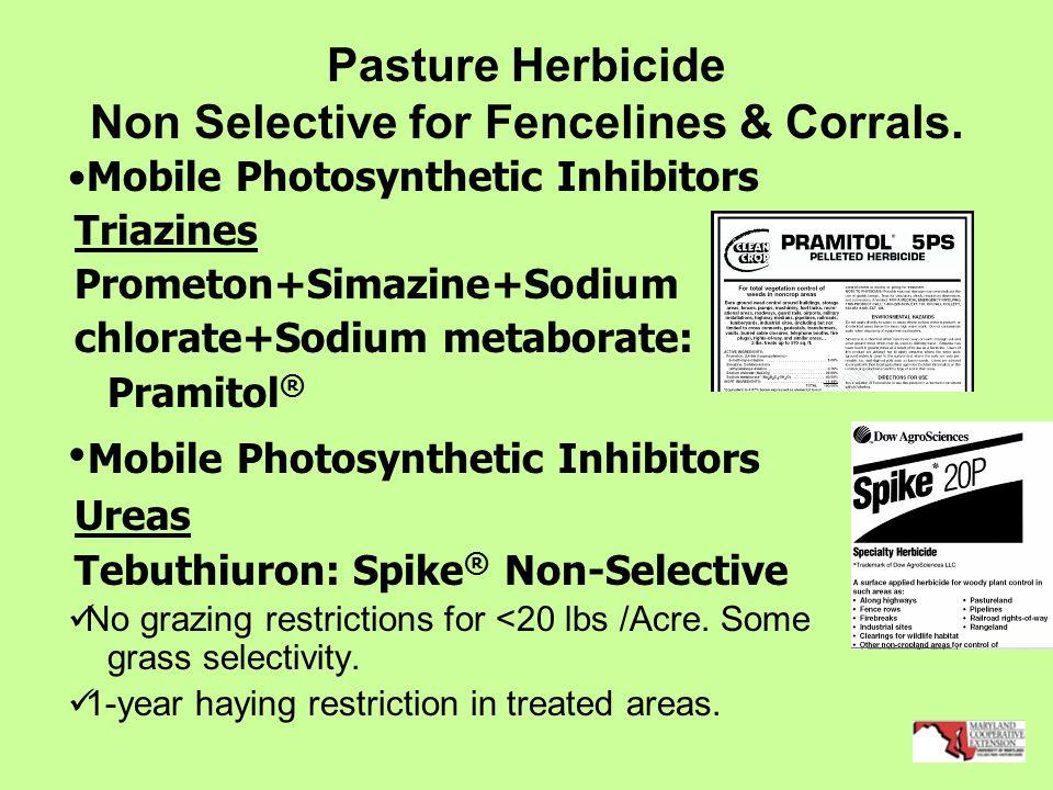 Pasture Herbicide Non Selective for Fencelines & Corrals.