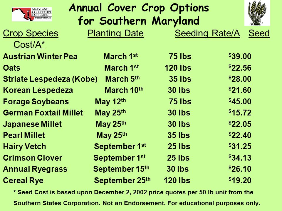 Annual Cover Crop Options for Southern Maryland Crop Species Planting Date Seeding Rate/A Seed Cost/A* Austrian Winter Pea March 1 st 75 lbs $ 39.00 Oats March 1 st 120 lbs $ 22.56 Striate Lespedeza (Kobe) March 5 th 35 lbs $ 28.00 Korean Lespedeza March 10 th 30 lbs $ 21.60 Forage Soybeans May 12 th 75 lbs $ 45.00 German Foxtail Millet May 25 th 30 lbs $ 15.72 Japanese Millet May 25 th 30 lbs $ 22.05 Pearl Millet May 25 th 35 lbs $ 22.40 Hairy Vetch September 1 st 25 lbs $ 31.25 Crimson Clover September 1 st 25 lbs $ 34.13 Annual Ryegrass September 15 th 30 lbs $ 26.10 Cereal Rye September 25 th 120 lbs $ 19.20 * Seed Cost is based upon December 2, 2002 price quotes per 50 lb unit from the Southern States Corporation.
