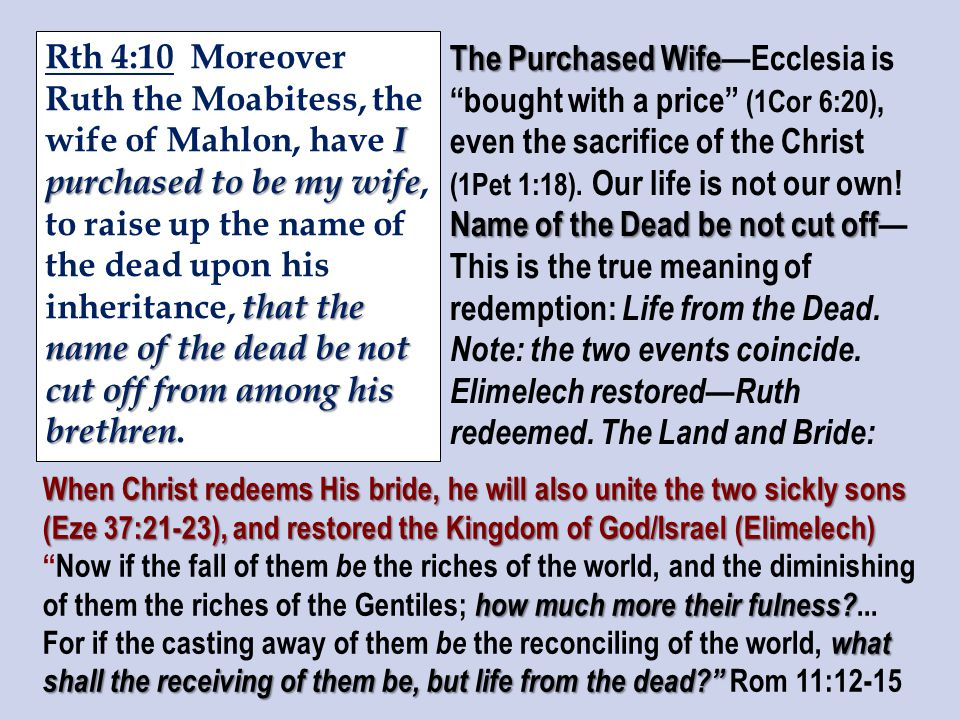I purchased to be my wife that the name of the dead be not cut off from among his brethren Rth 4:10 Moreover Ruth the Moabitess, the wife of Mahlon, have I purchased to be my wife, to raise up the name of the dead upon his inheritance, that the name of the dead be not cut off from among his brethren.