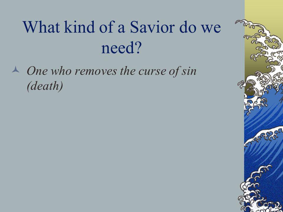 Our Savior ' s Name Jesus: Savior