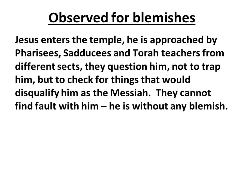 Observed for blemishes Jesus enters the temple, he is approached by Pharisees, Sadducees and Torah teachers from different sects, they question him, not to trap him, but to check for things that would disqualify him as the Messiah.